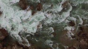 Fluxo selvagem e rápido do rio video estoque