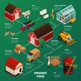 Fluxograma da produção alimentar da exploração agrícola Fotos de Stock Royalty Free
