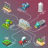 Fluxograma isométrico dos robôs agrícolas Fotografia de Stock Royalty Free