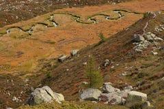 Fluxos de córrego pequenos no prado, na atmosfera outonal Fotografia de Stock Royalty Free