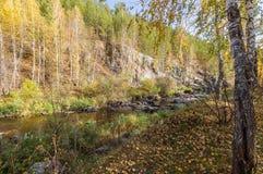 Fluya en el bosque del otoño, Urales, Rusia Imagen de archivo