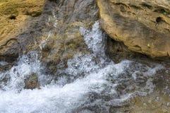 Fluya en el bosque un flujo rápido de agua Imagen de archivo libre de regalías