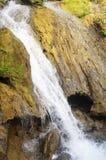 Fluya en el bosque un flujo rápido de agua Imágenes de archivo libres de regalías