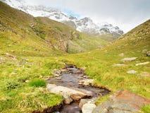 Fluya en el prado verde fresco de las montañas, picos nevosos de las montañas en fondo Imagen de archivo libre de regalías