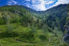 Fluya en un valle de la montaña, Siberia, Altai foto de archivo