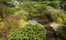 Fluya fluir sobre pasos en los jardines de Trebah, Cornualles Fotos de archivo libres de regalías