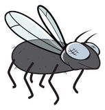 Fly. Cartoon vector illustration of a fly Stock Image