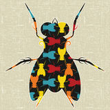 Fly. Abstract decorative colorful textured fly silhouette. Illustration. Vector stock illustration