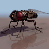 Fly. 3D Fly stock illustration
