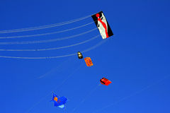 Fly A Kite On Blue Summer Sky Stock Photography