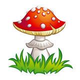 Fly-agaric illustration. Fly-agaric in grass. EPS8  illustration Royalty Free Stock Image