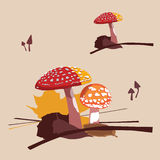 Fly agarics not edible fungi Royalty Free Stock Photos