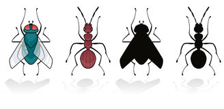 Fly and ant. Isolated on white with his silhouette vector illustration