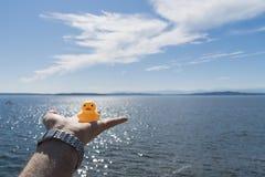 Fly away rubber ducky Stock Photos