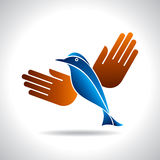 Fly of bird to hand. creative idea Stock Photos