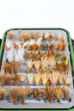 Fly Box Detail Dry Flies Stock Images