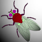Fly cartoon Royalty Free Stock Photos