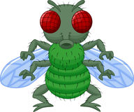 Fly cartoon character Royalty Free Stock Photography