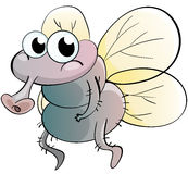 Fly cartoon Stock Image