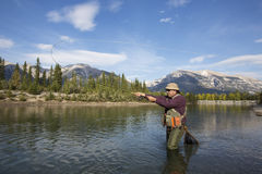 Fly Casting. Fisherman fly fishing in a mountain river Stock Photos