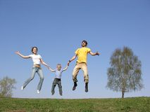 Fly family. spring Royalty Free Stock Photo