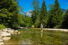 Fly Fisher Stock Photo