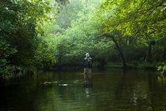 Fly fisherman. A lone fly fisherman, with full gear, including net on his back and hat, stands in the river fishing. It is early morning in September and the Stock Images
