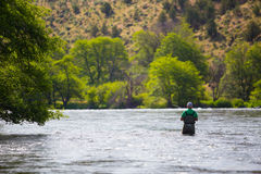 Fly Fisherman Casting on the Deschutes River Stock Photo