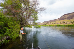 Fly Fisherman Casting on the Deschutes River Royalty Free Stock Photography