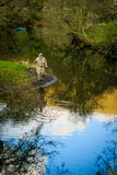Fly fisherman casting Stock Photography