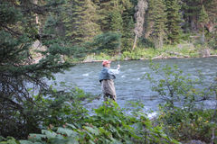 Fly fisherman in the forest royalty free stock photo