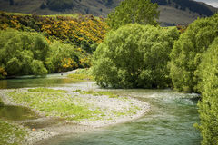 Fly fisherman in pristine New Zealand Stock Images