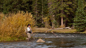 Fly Fisherman Royalty Free Stock Photos