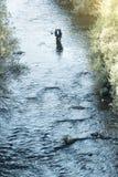Fly fisherman using flyfishing rod. Fly fisherman using flyfishing rod in beautiful river Stock Photography