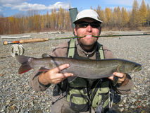 Fly fishing. In Mongolian river Stock Photography