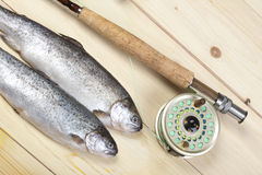 Free Fly Fishing Royalty Free Stock Images - 11463749