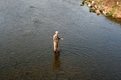 Fly fishing. Angler on the small river Royalty Free Stock Photos