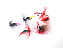 Fly fishing. Fly's, used when fishing for trout Royalty Free Stock Images