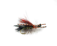 Fly for Fishing Stock Photos
