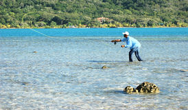 Fly fishing. A dark skinned fly fisherman casting on the flats in a clear blue warm sea Stock Photos