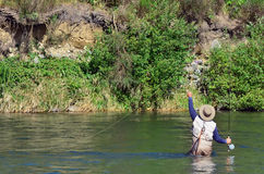 Fly Fishing Royalty Free Stock Photography