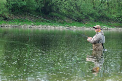 Fly fishing. Fisherman angling on the river Royalty Free Stock Photos