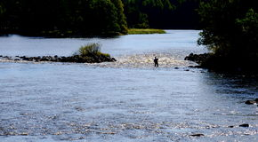 Fly-fishing Photo stock