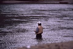 Fly Fishing. Man in river fly fishing stock photography