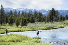 Free Fly Fishing Royalty Free Stock Images - 3588239
