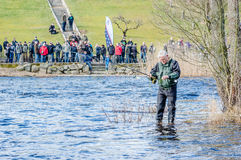 Free Fly Fishing Stock Photography - 52063482