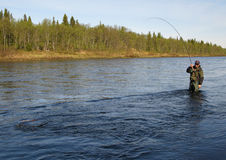 Fly fishing. On river in wildness Royalty Free Stock Photos