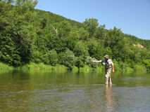 Fly fishing. On summer river Royalty Free Stock Photography