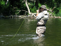 Fly fishing. On river in wildness Stock Images