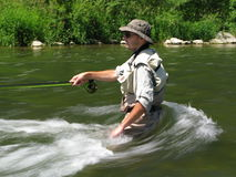 Fly fishing. On river in summer Royalty Free Stock Images